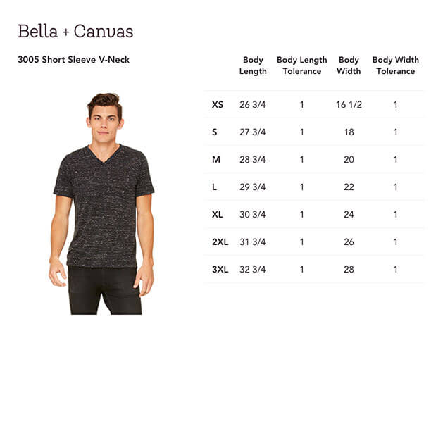 c86baa0479ba A favorite for screen-printing, this classic v-neck tee features unisex  sizing, a retail fit and is made from superior combed and ring spun cotton.