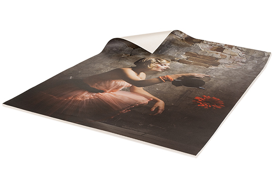 Print Canvas Posters Online