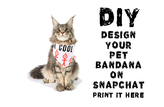 Print DIY Pet Bandanas Online